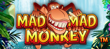 Enjoy a jungle jam with a crazy little WILD Monkey! He's Stacked on Reels 2, 3, and 4, and DOUBLES Prizes in a WIN! 3 or More LOGO award FREE GAMES with TRIPLED Prizes and Stacked Bananas!